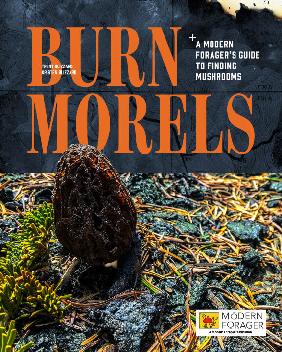 Burn Morels ebook